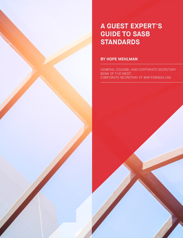 A Guest Expert's Guide to SASB Standards